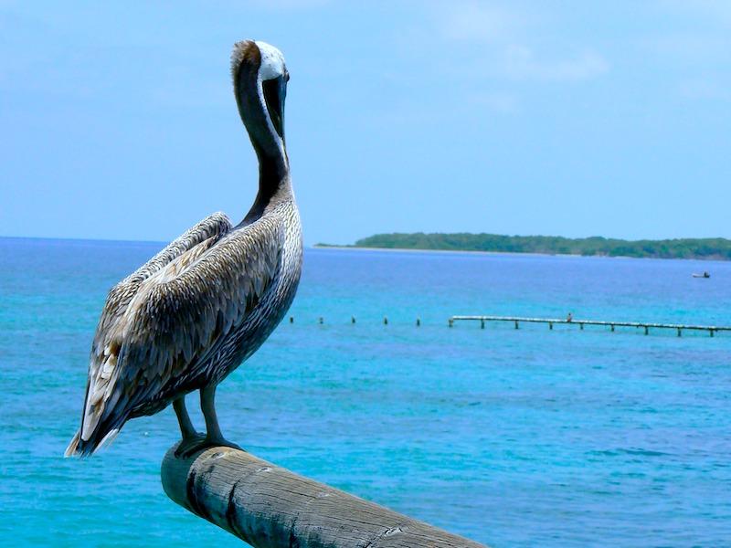 Kolumbien Reiseangebote am Meer