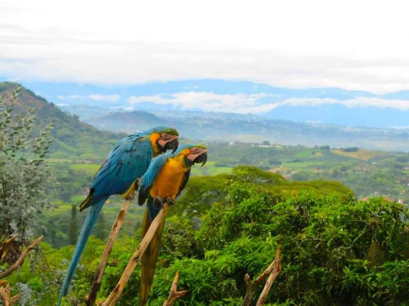 Kolumbien Reise rund um Cartagena